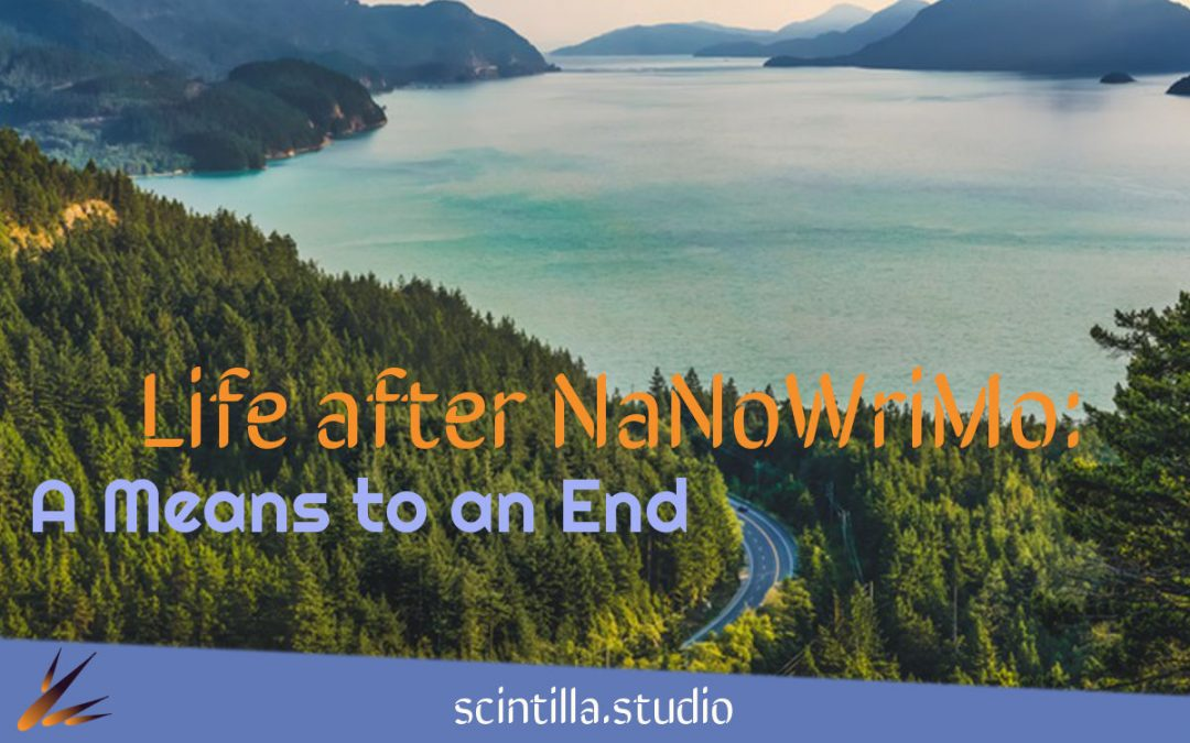 Life After NaNoWriMo: A Means to an End